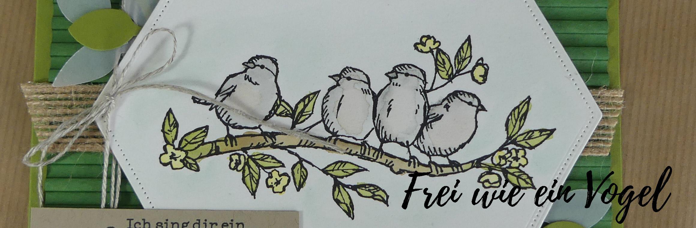 Alle meine Schätze #2: Frei wie ein Vogel